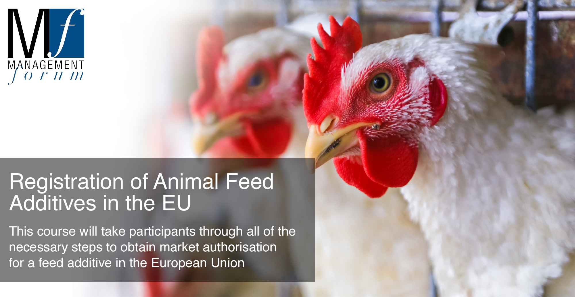 Two-day practical course with interactive workshops: Registration of Animal Feed Additives in the EU. 17-18 June 2020
