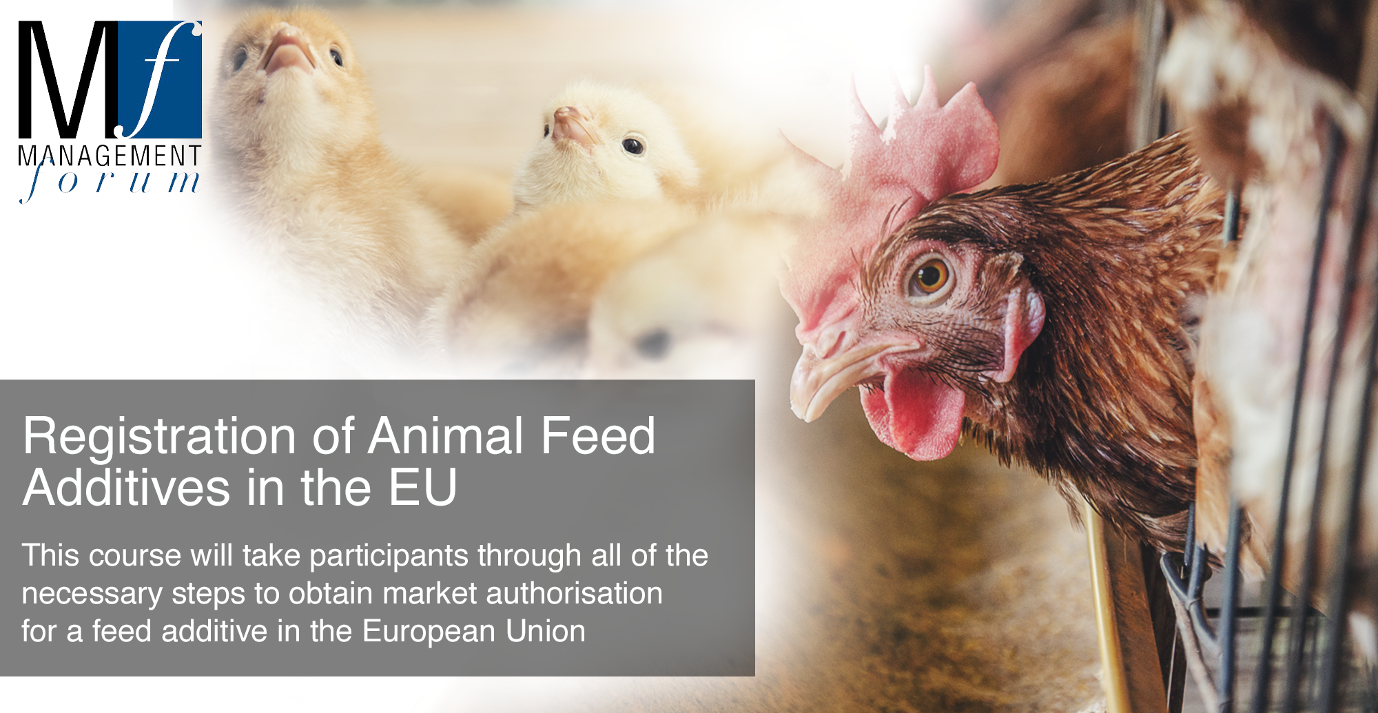 Two-day practical course with interactive workshops: Registration of Animal Feed Additives in the EU. 5-6 June 2019