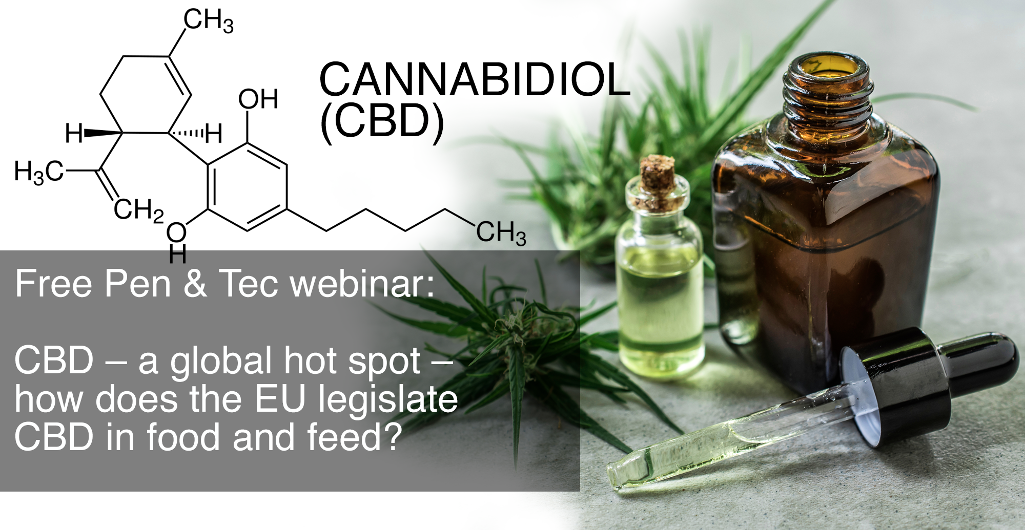 FREE Webinar: CBD – a global hot spot – how does the EU legislate CBD in food and feed?