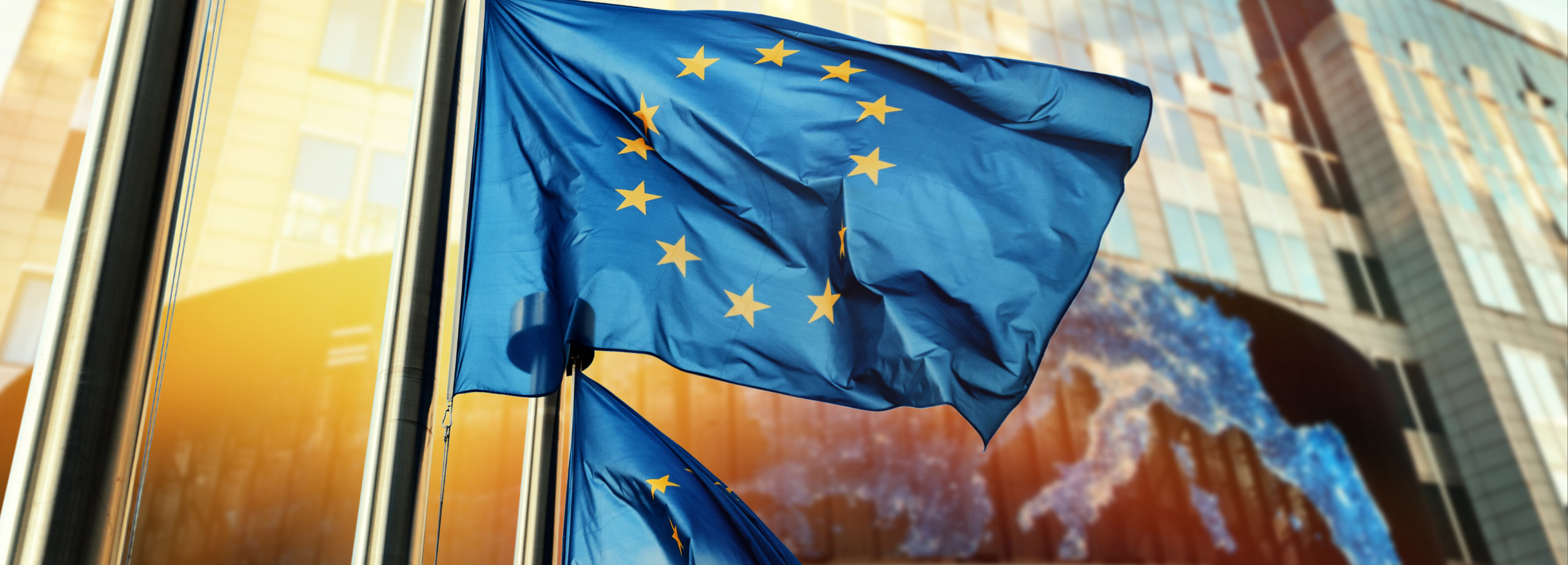 REFIT- Will the revised EU feed additives legislation be fit for purpose?