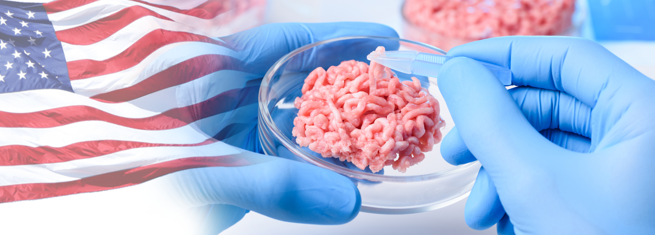 A meaty issue- is the U.S. prepared to place lab-grown meat on the market
