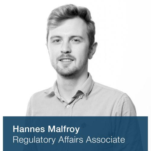 Hannes Malfroy